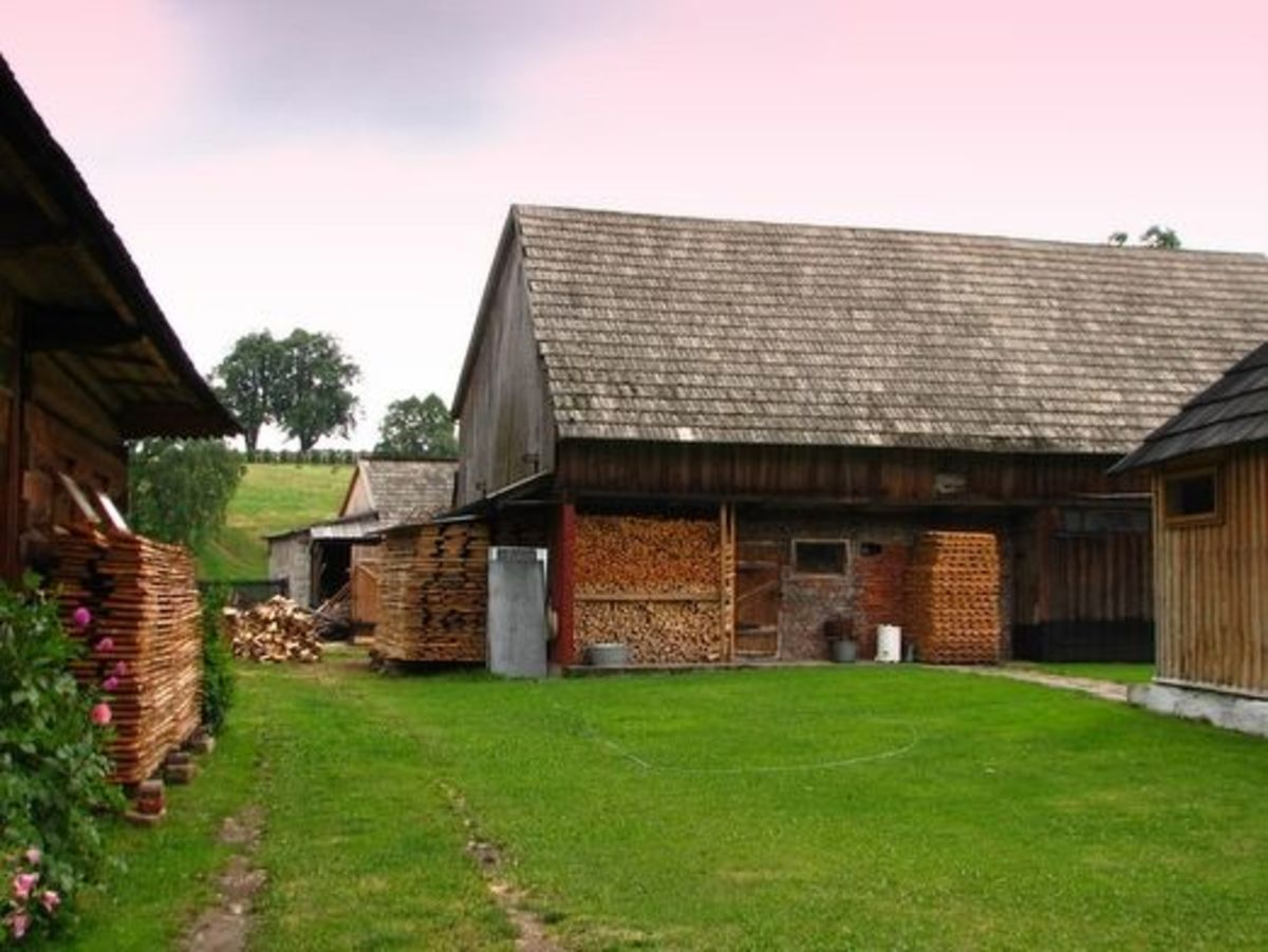 Traditional Wooden Farmhouse and Outbuildings in Chochołów