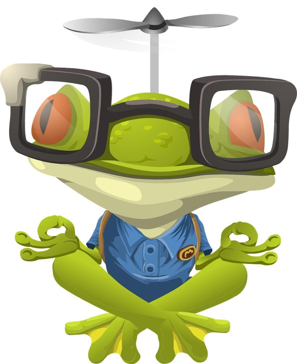 Big Eyed Frog