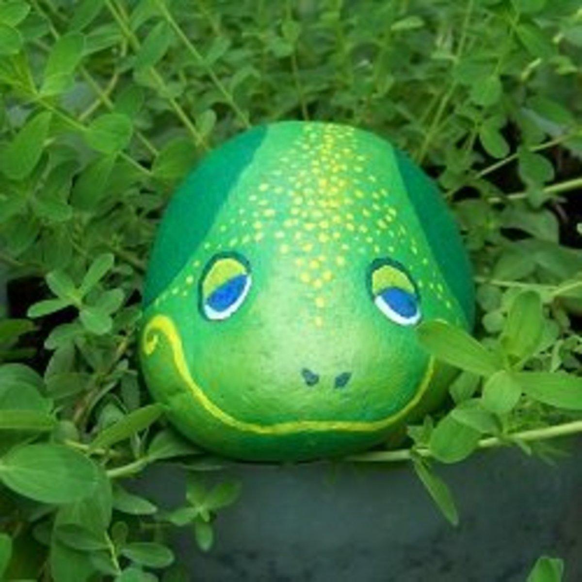 Painted Frog: Rock Art