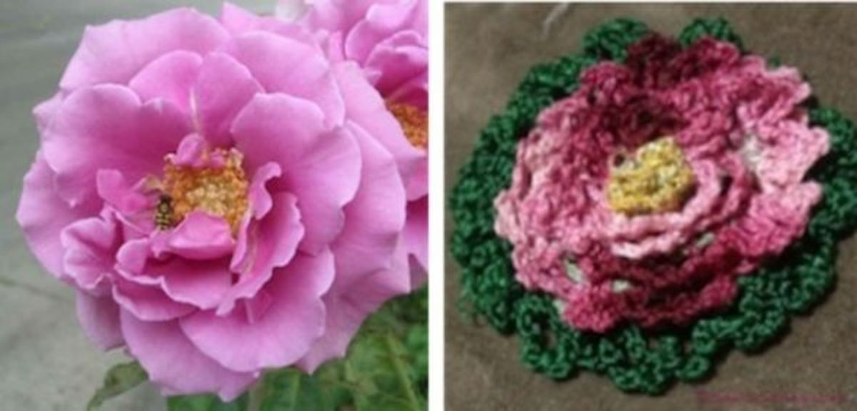 Real & Crocheted Rose