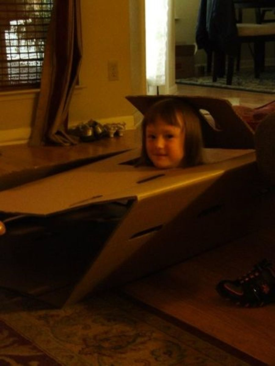 Turning a cardboard box in the living room into a 'formula-one race car'.