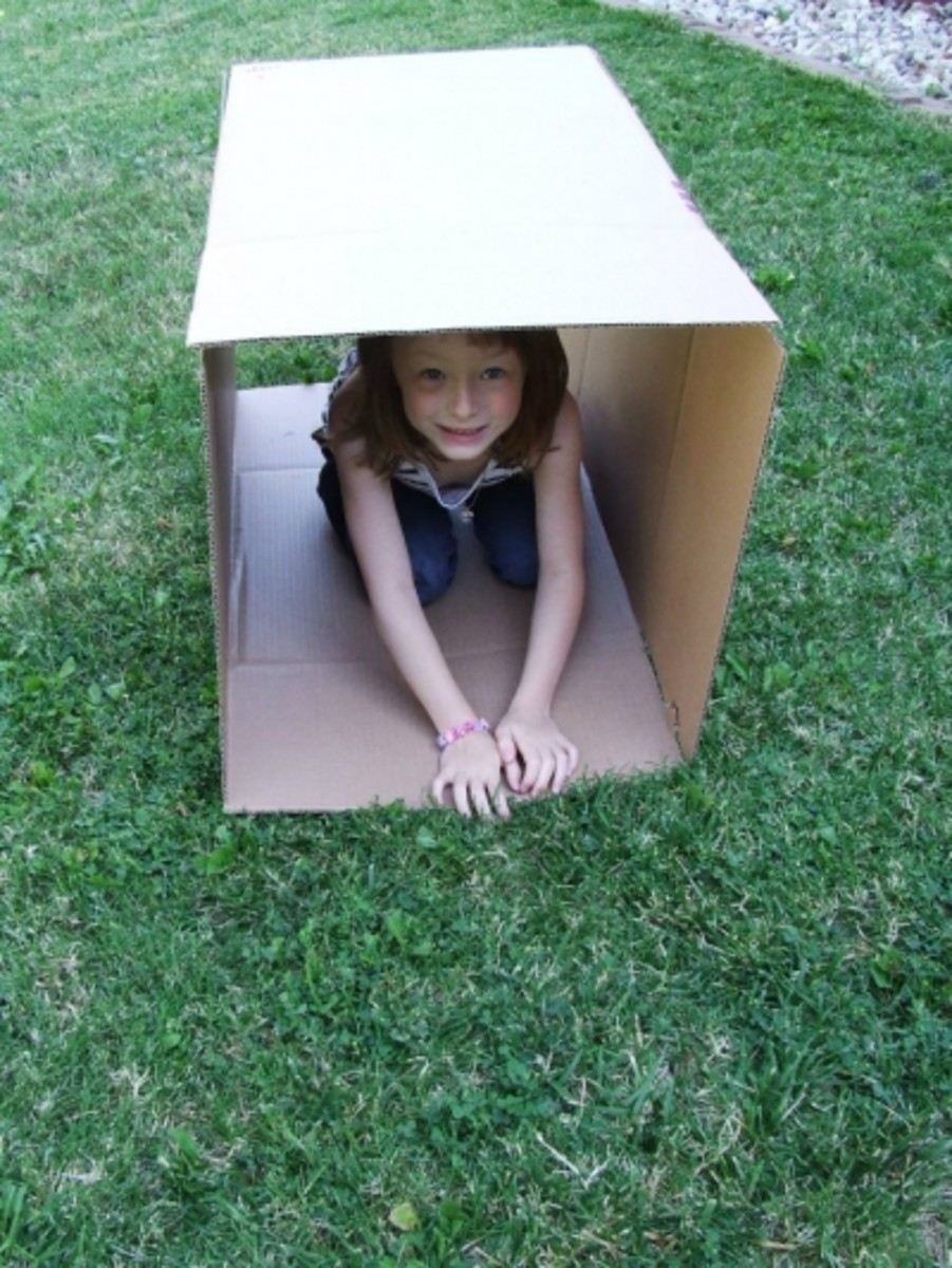 Cardboard box 'mini-tunnel'? Maybe we could make a maze like in the hamster cage?