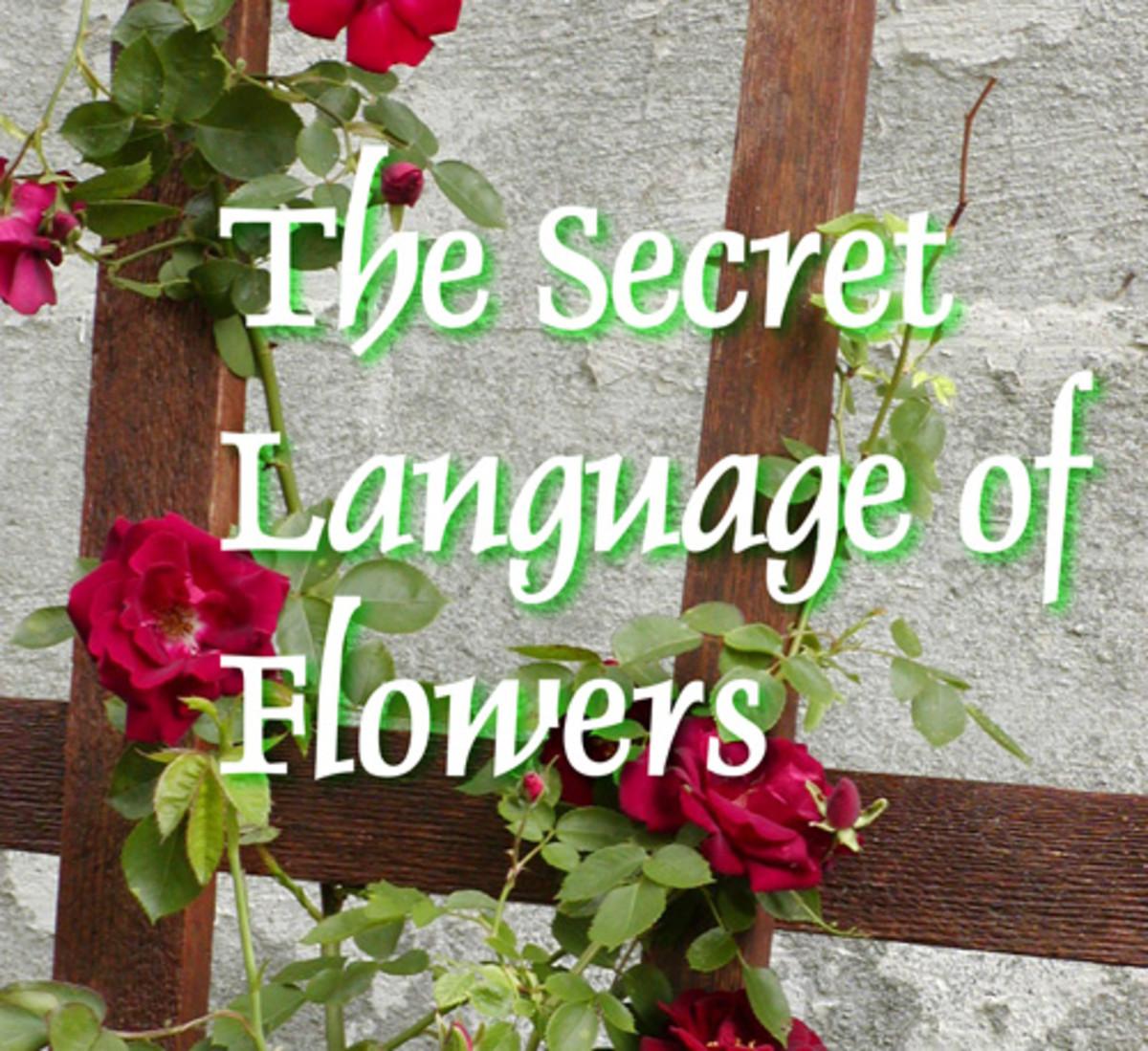 flowersymbols