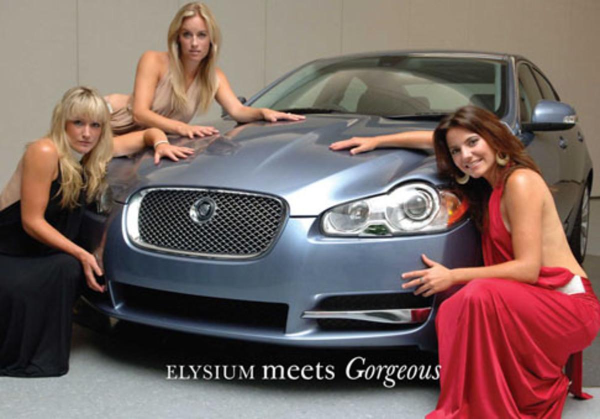 Jaguar Car or Cat?