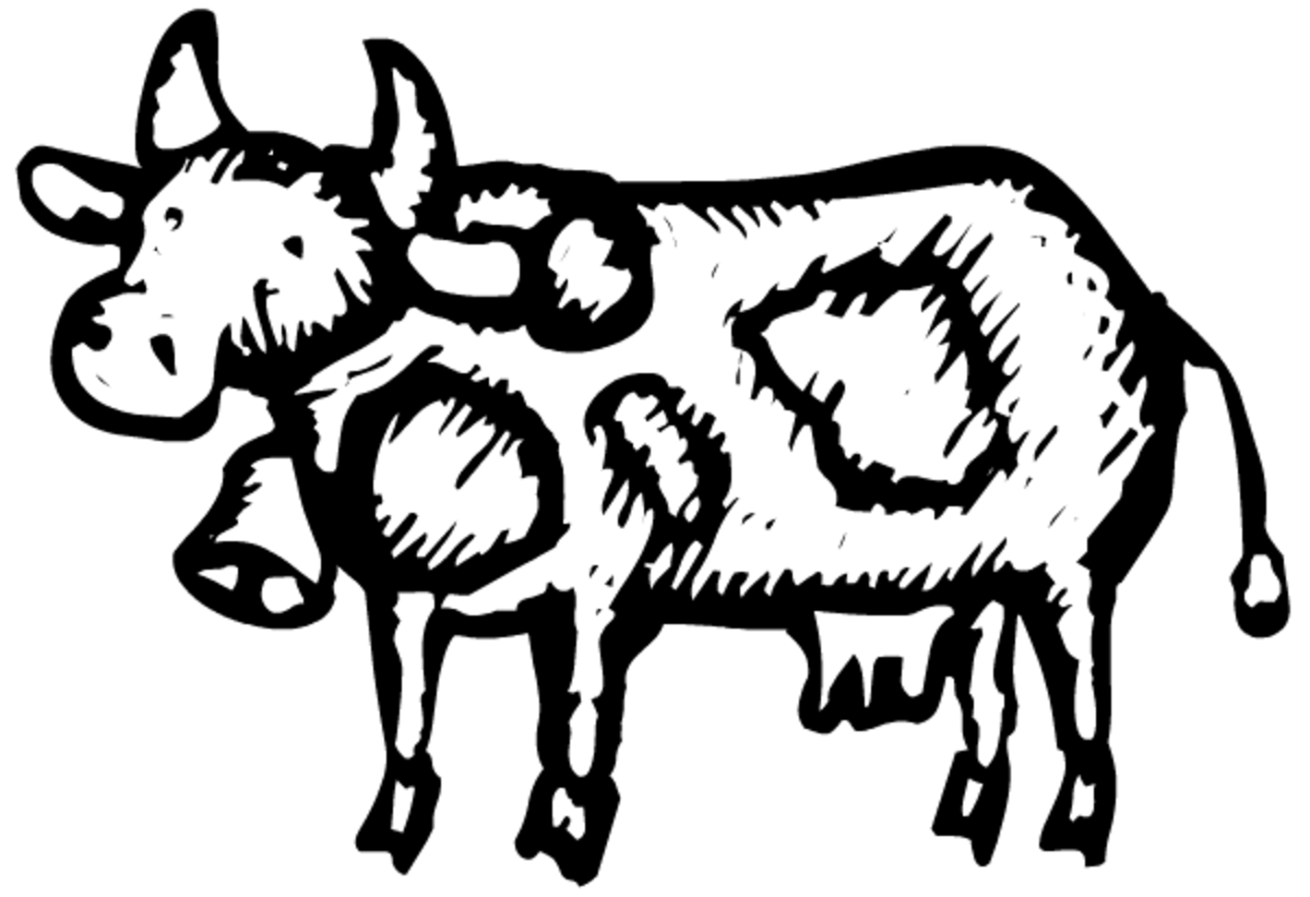 Please scroll down to see all the animal clip art
