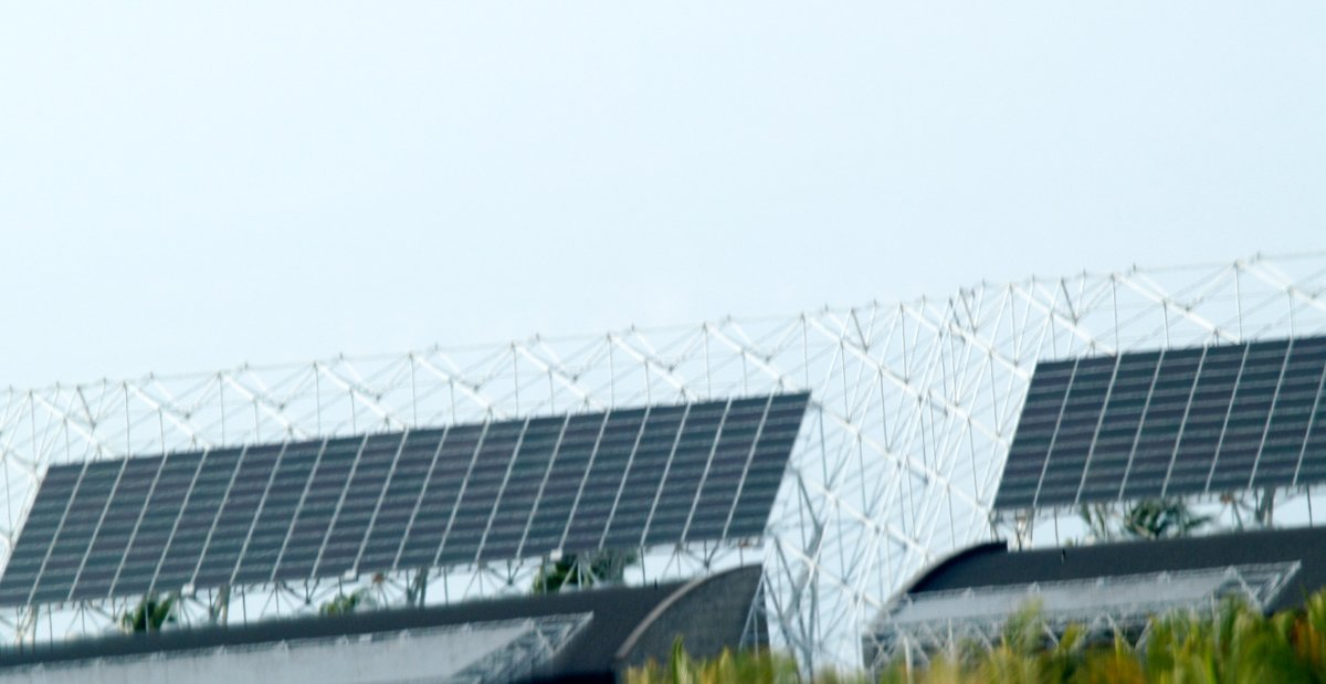 Basics of Solar Panels: Using Sunlight to Generate Free Electricity