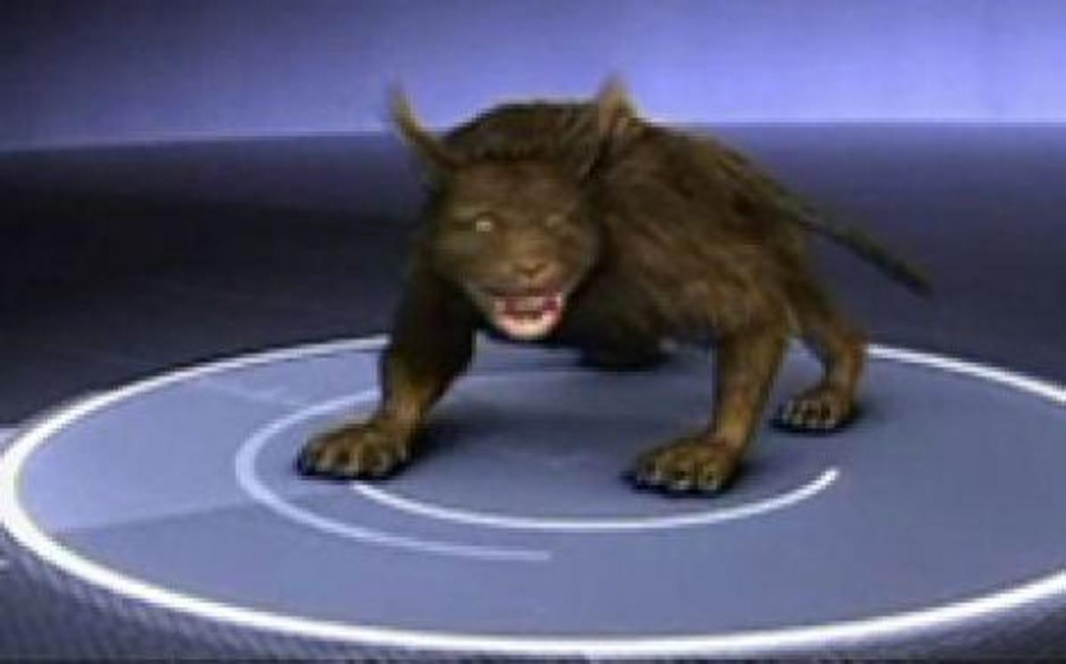 The Vampire Beast Of North Carolina , What Is It  And Where Did It Come From.