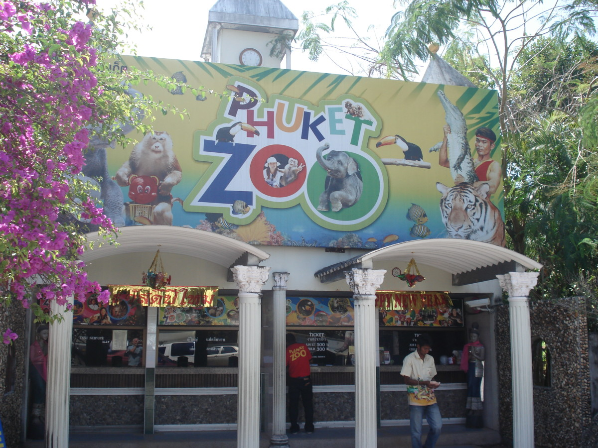 Phuket Zoo in Thailand
