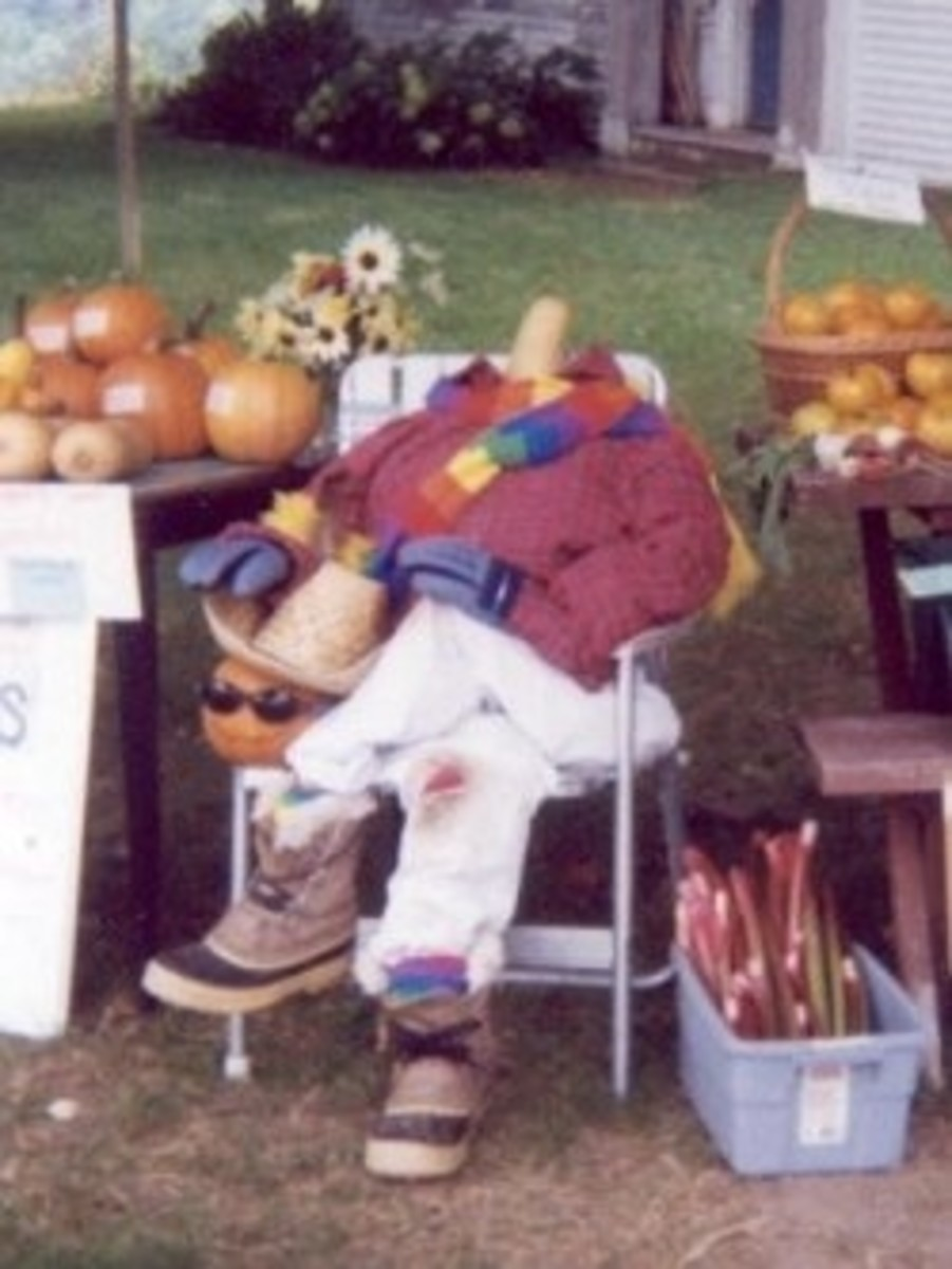 """The """"Headless Harvester"""" at our self-serve produce stand in South Kent, CT"""