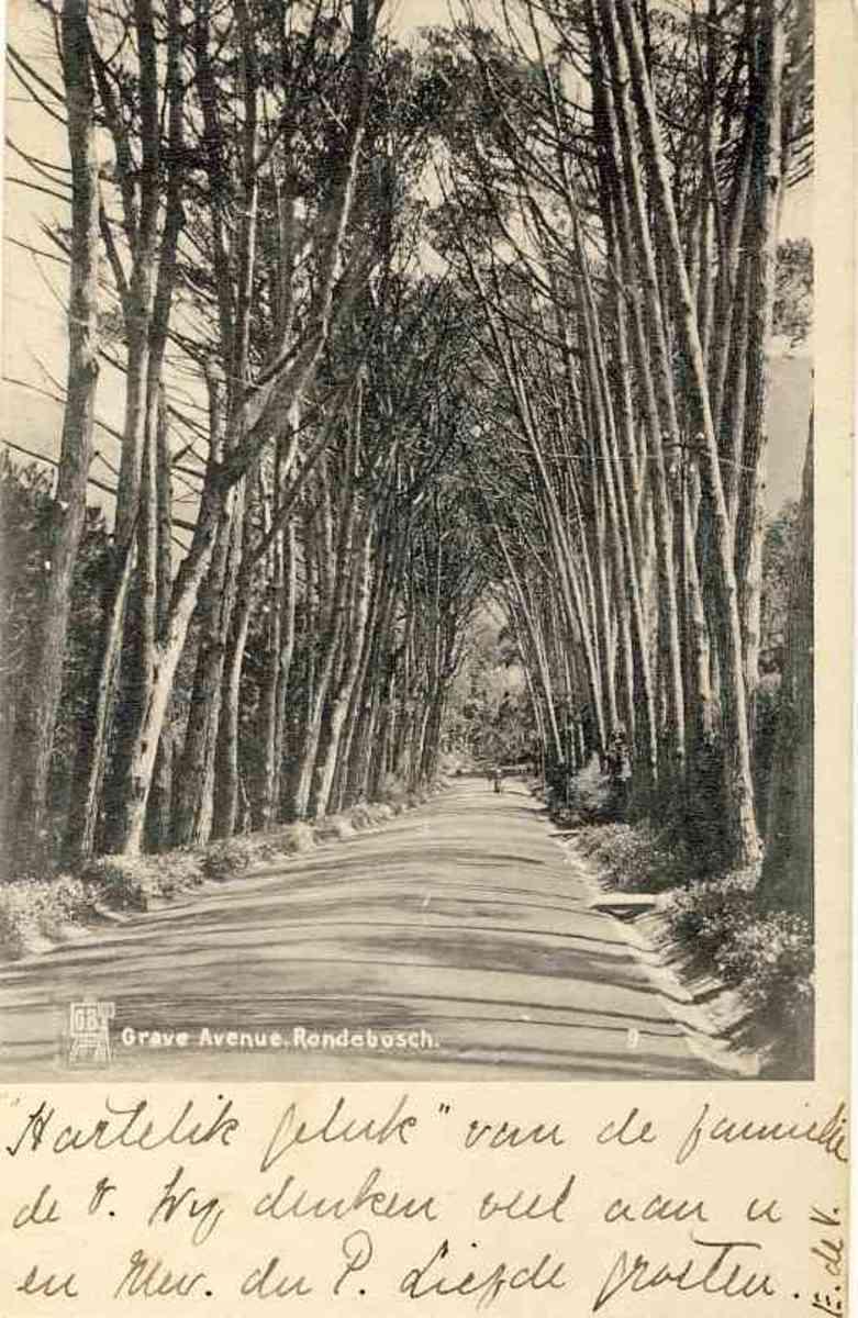 Grave Avenue Rondebosch