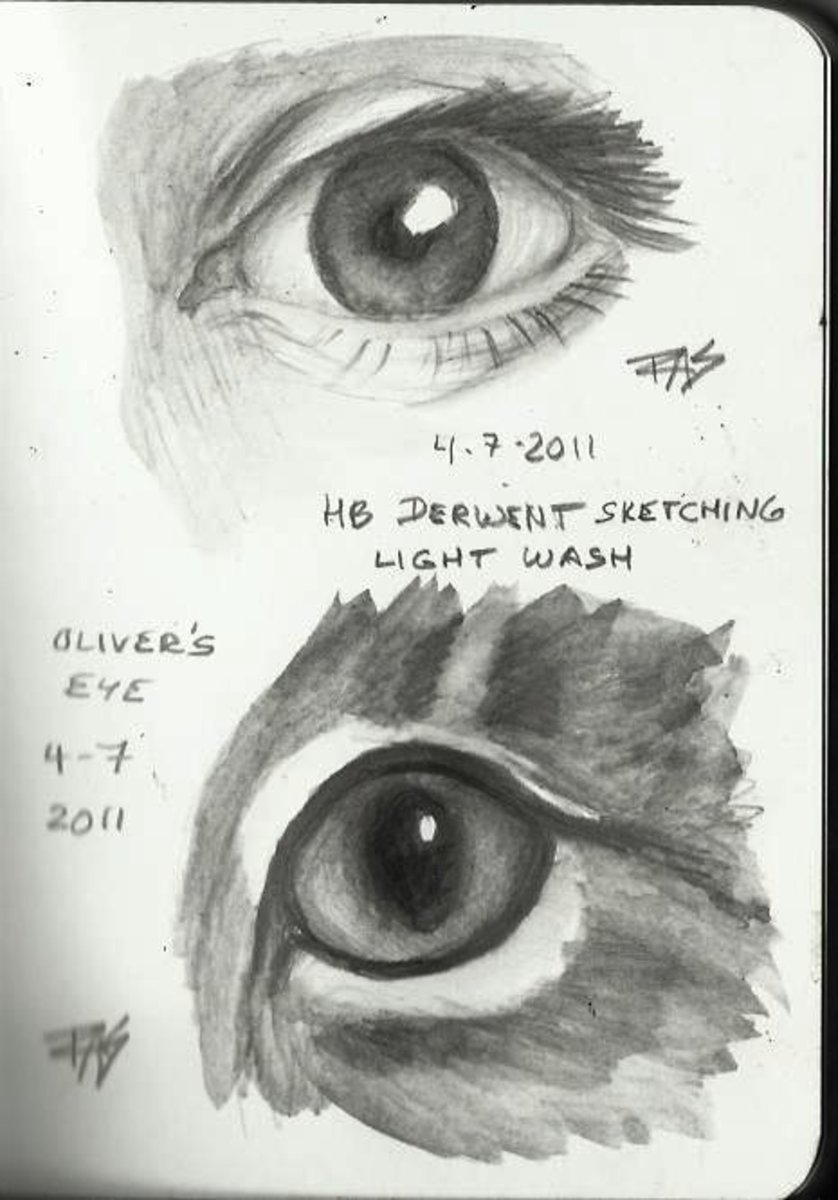 Derwent Graphitints and Derwent Sketching pencils (washable graphite) give a very different, beautiful look when washed.