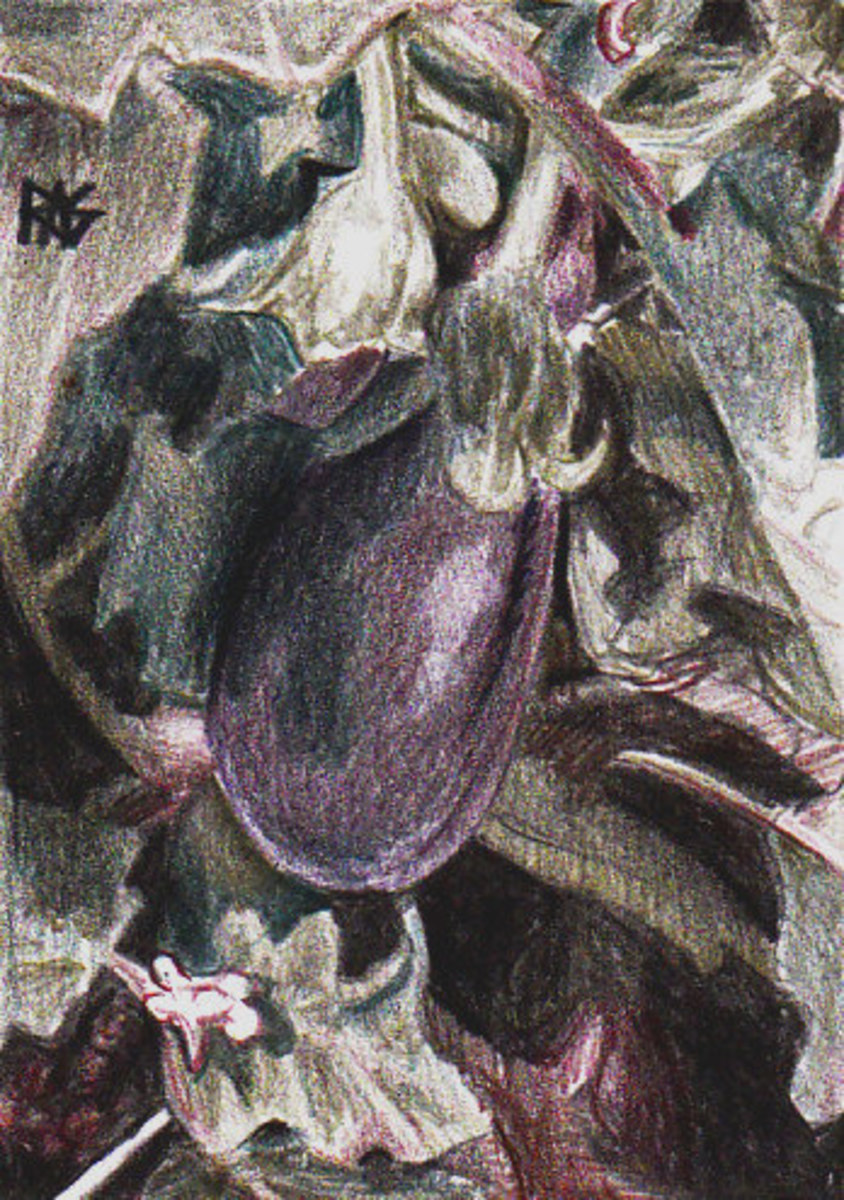 Eggplant on the Vine by Robert A. Sloan, from a photo reference in the Reference Image Library on WetCanvas.com
