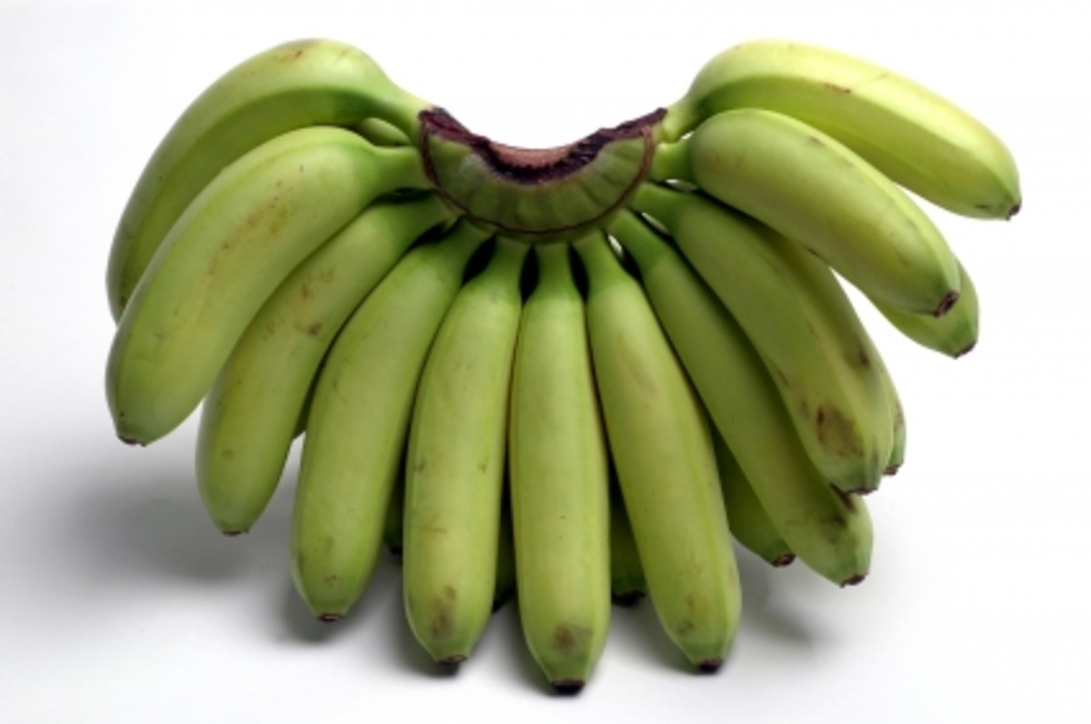 plantains---how-to-cook-plantain-bananas