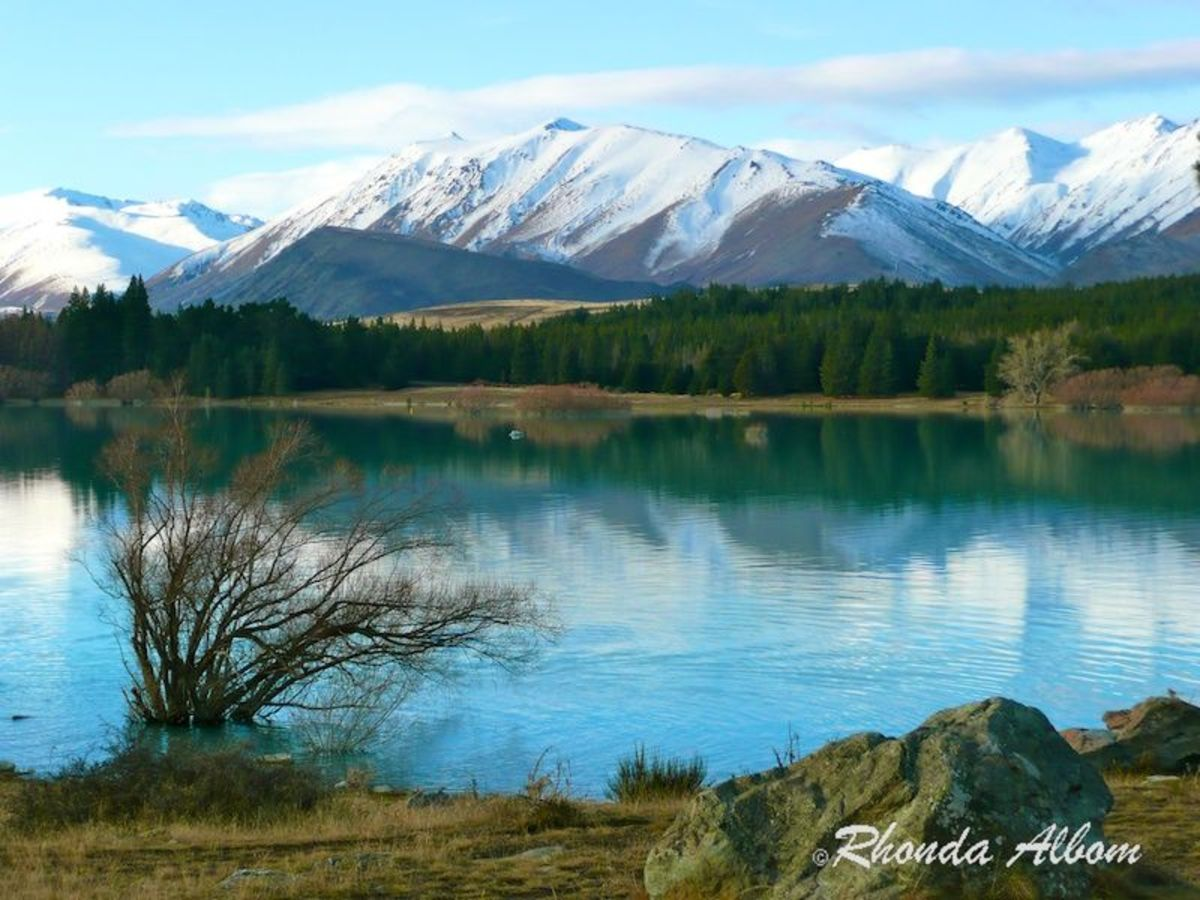 My Top 10 Adjustments to New Zealand Life - The Story of an American Living in New Zealand