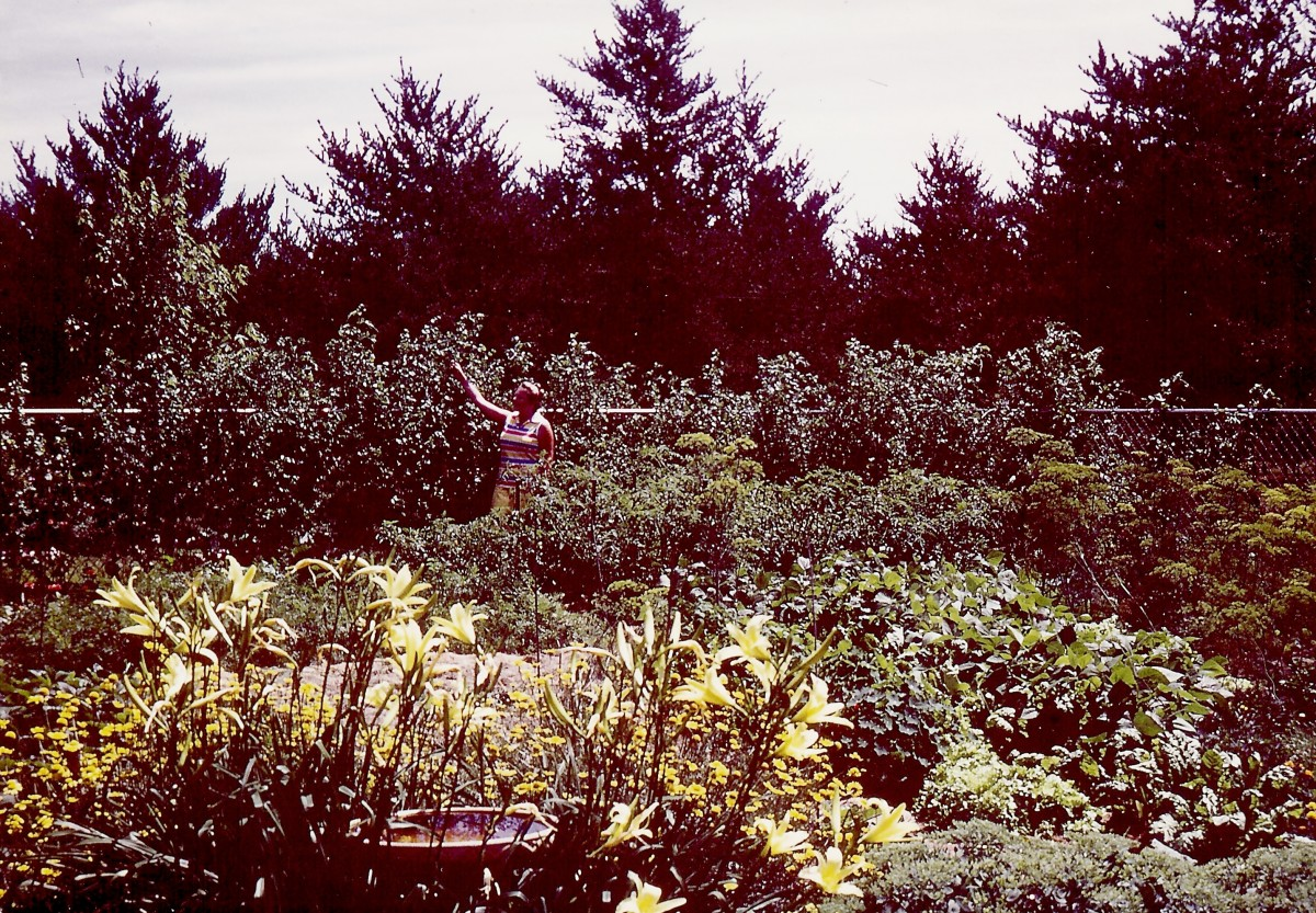 I am standing in my Wisconsin garden back in the 1970s