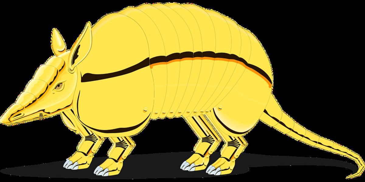 amarillo-armadillo