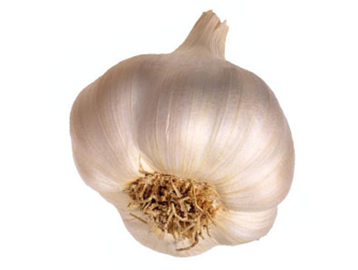 Garlic is all purpose.  It is from God's medicine cabinet.