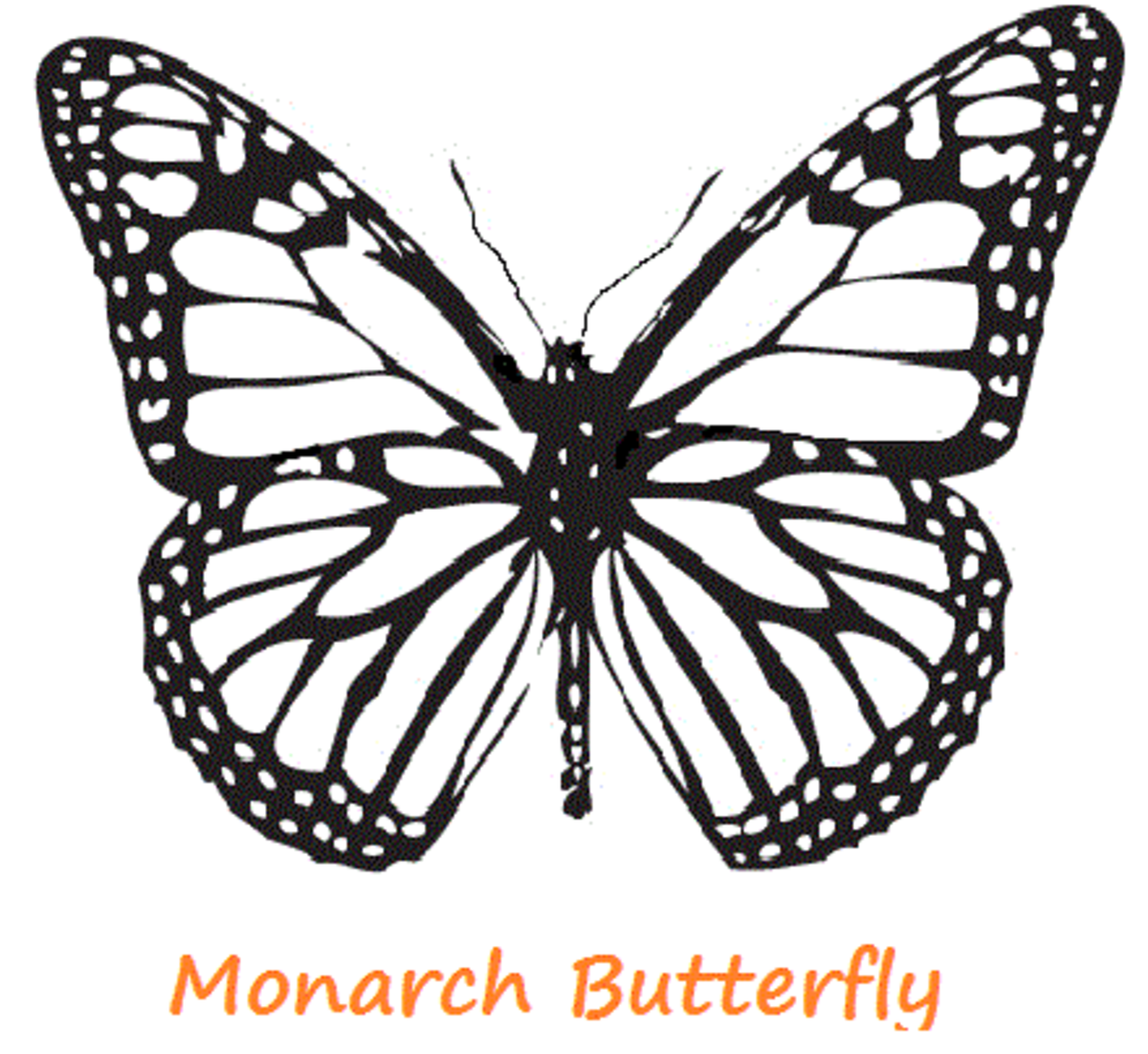 monarch coloring page - Monarch Caterpillar Coloring Page