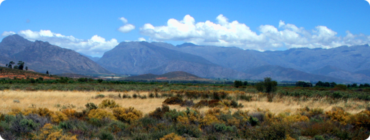 Veldt landscape from the Greater Taung local municipality.