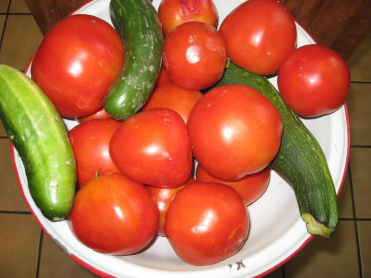 My Tomato Pie Recipe is below