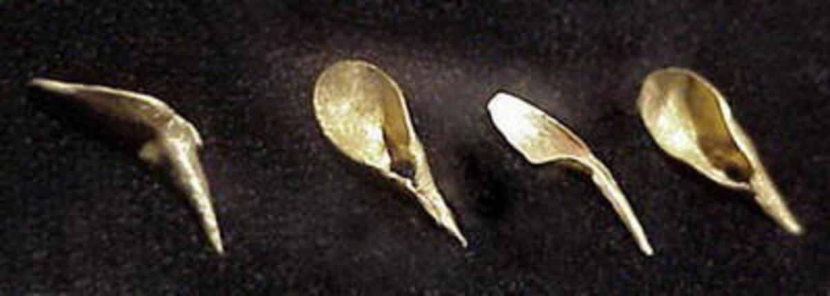 Golden Artifacts found in Mapungubwe
