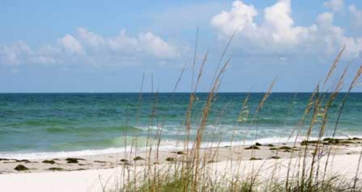 Enjoy Florida Beaches