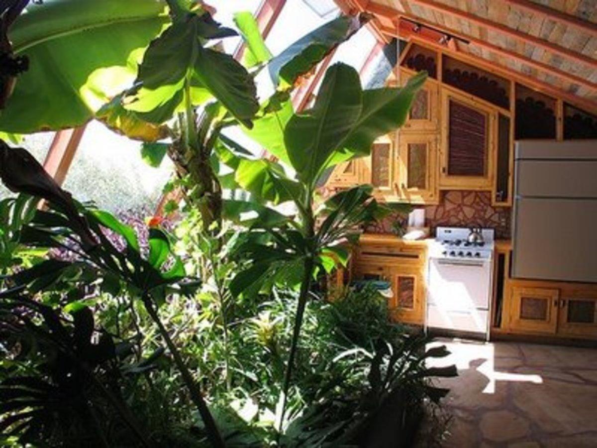 Green dream home earthship for Eco indoor garden house