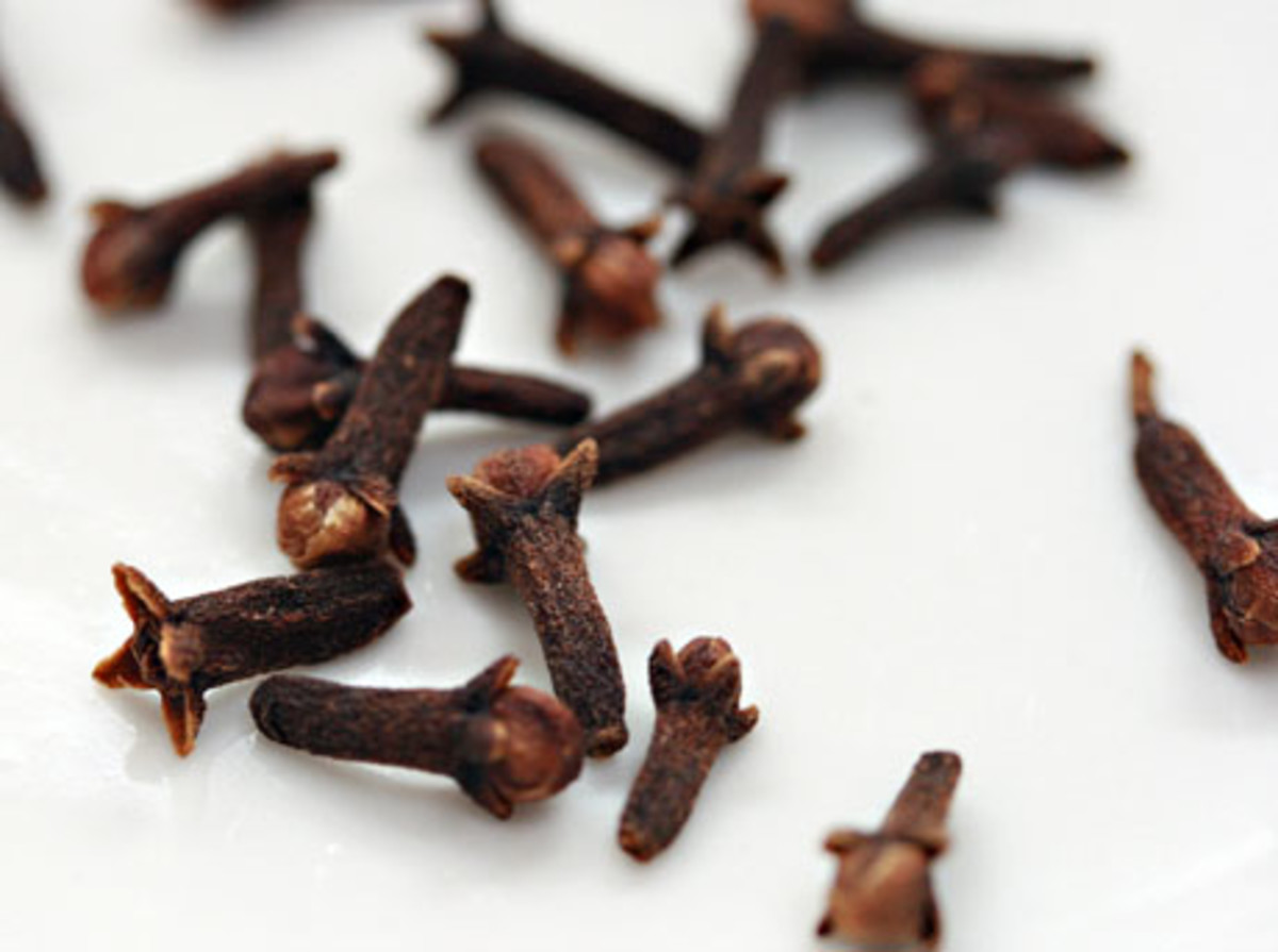 Cloves are a spice. They can be purchased whole or ground. Whole cloves have a spiked end that is easily poked into citrus fruit and even apples.