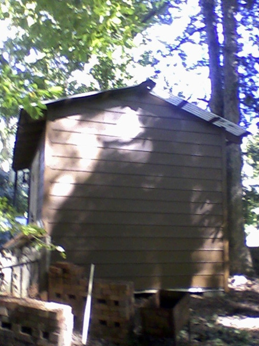 Rear of shed.