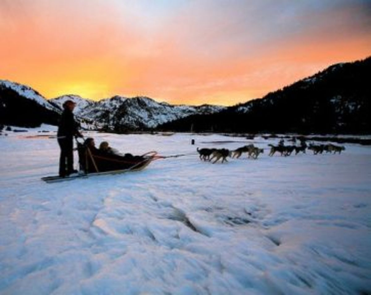 One of the benefits of Dog Sled Tours - the amazing Arctic scenery