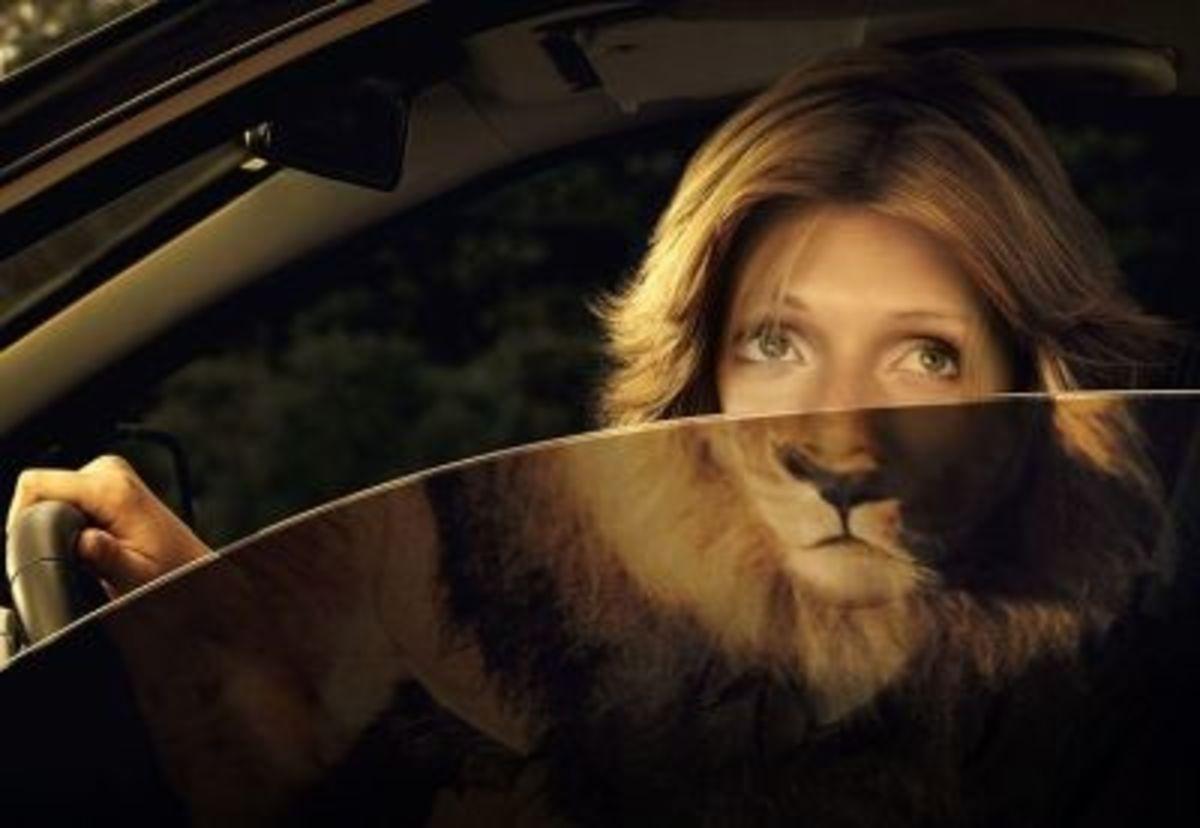 Half Lady, Half Lion