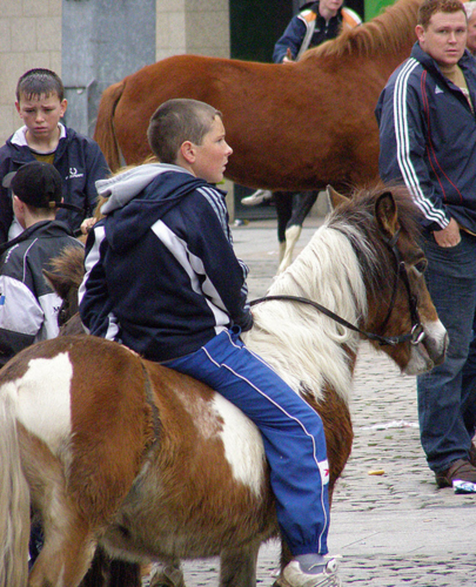 Smithfield Horse Market in Dublin, Ireland
