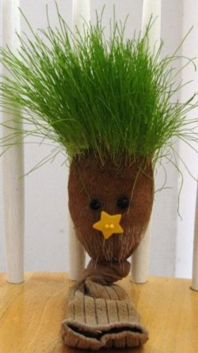 Grass Sock Pet