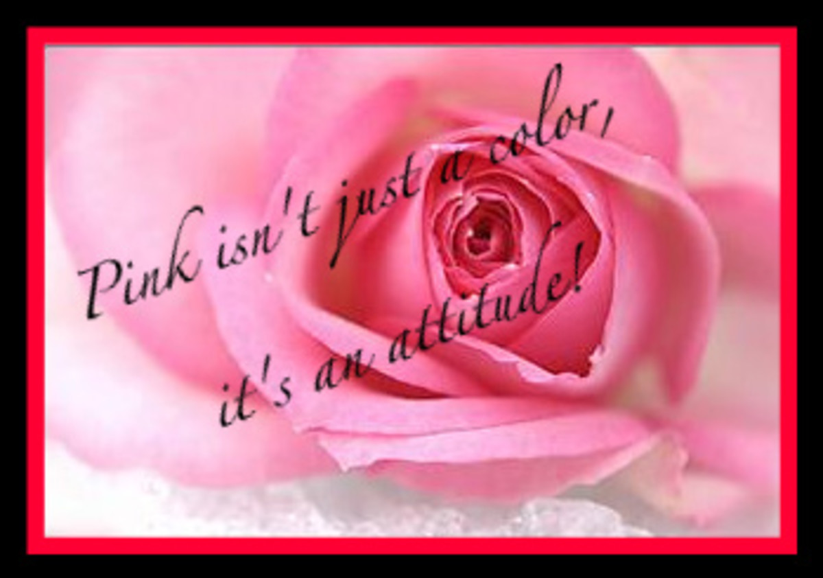 Pink isnt just a color, its an attitude