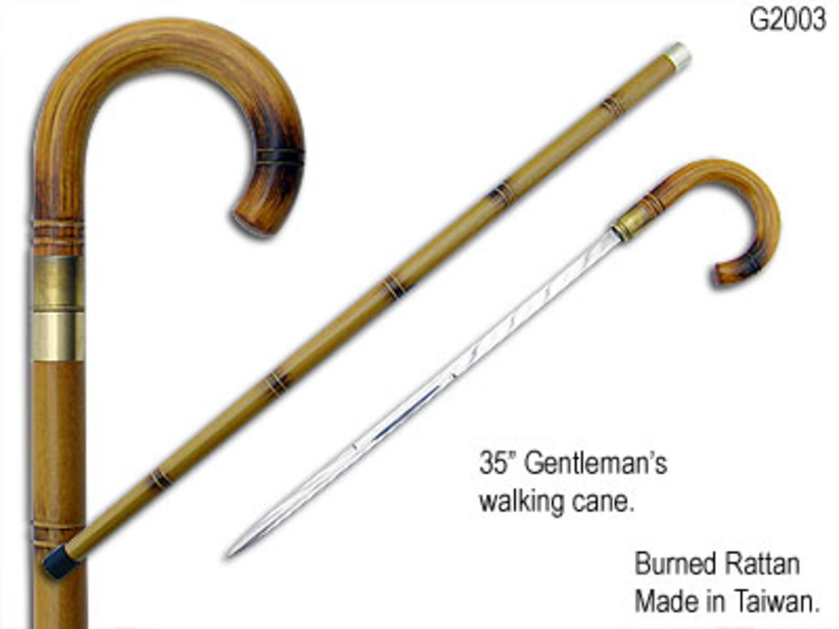 folding support cane  http://images.search.yahoo.com/images/
