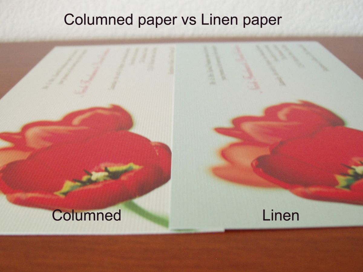 Columned paper 01