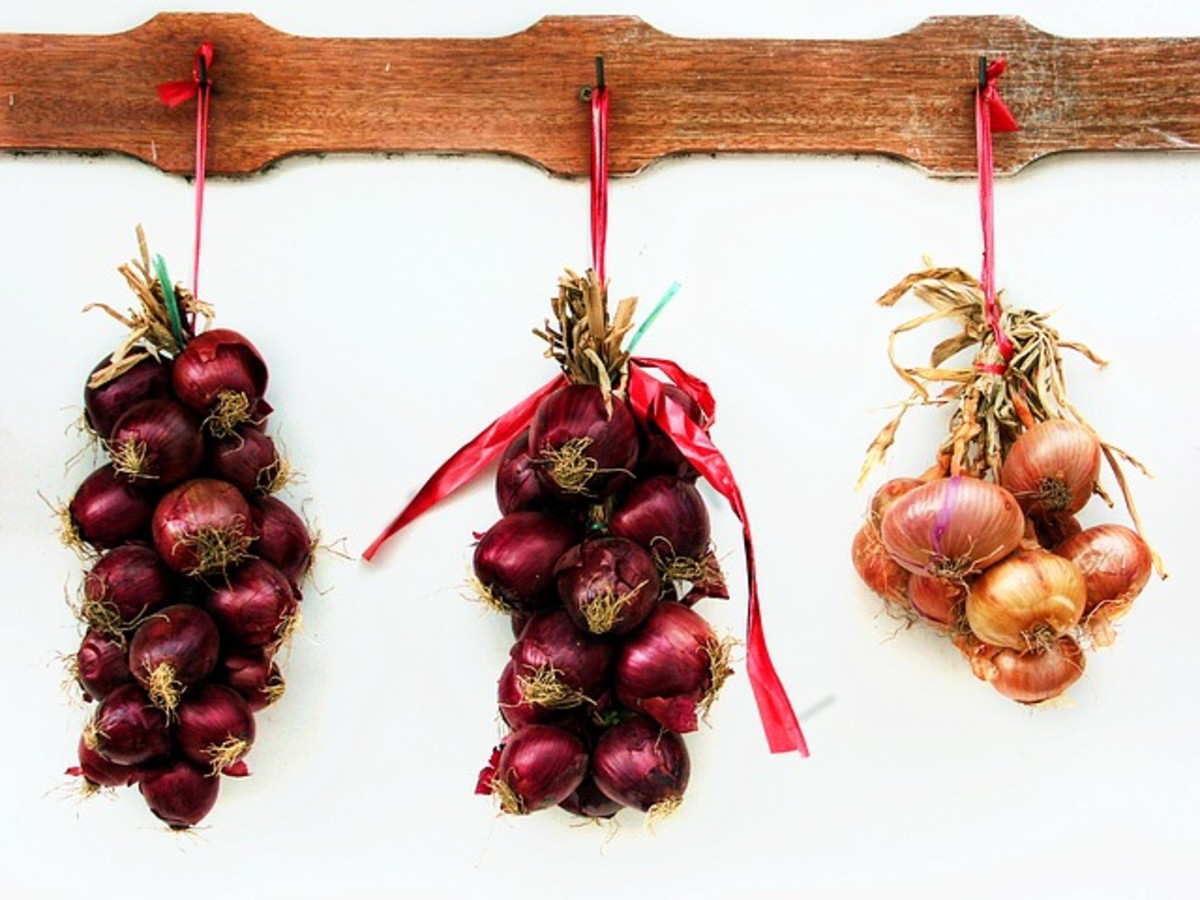 Red and yellow onions.