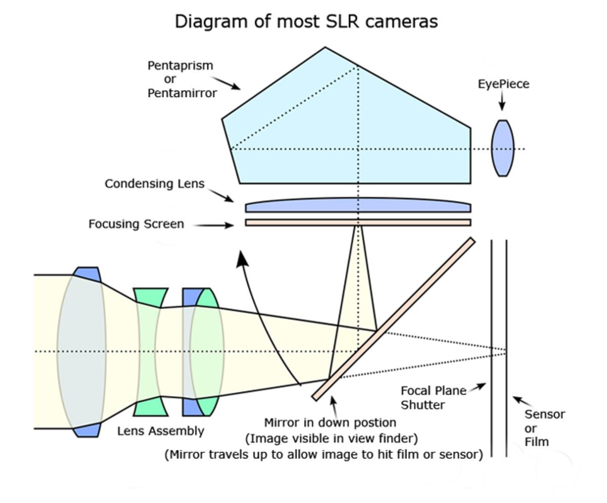 How a SLR Camera looks inside!