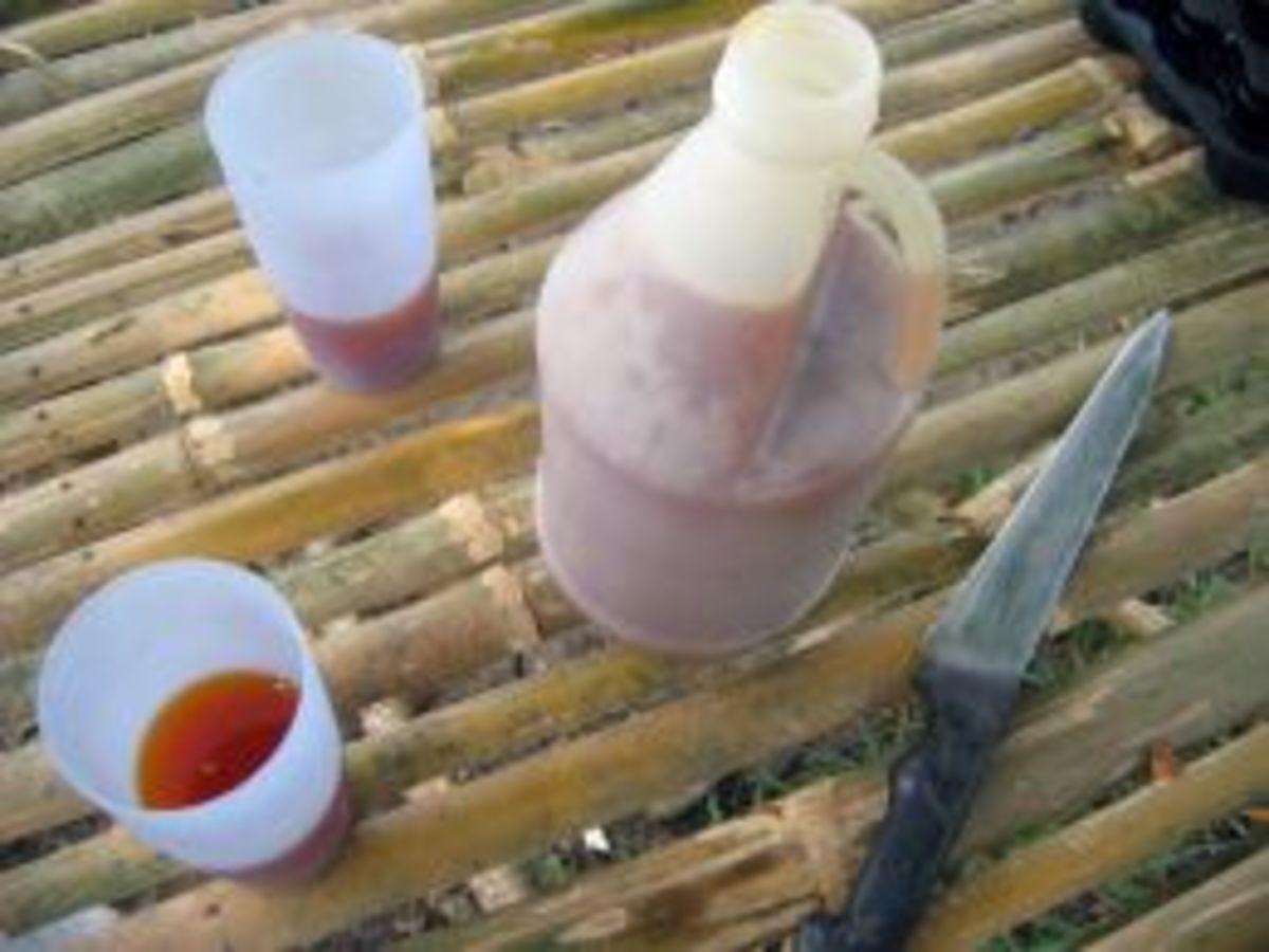 Lambanog -- coconut wine