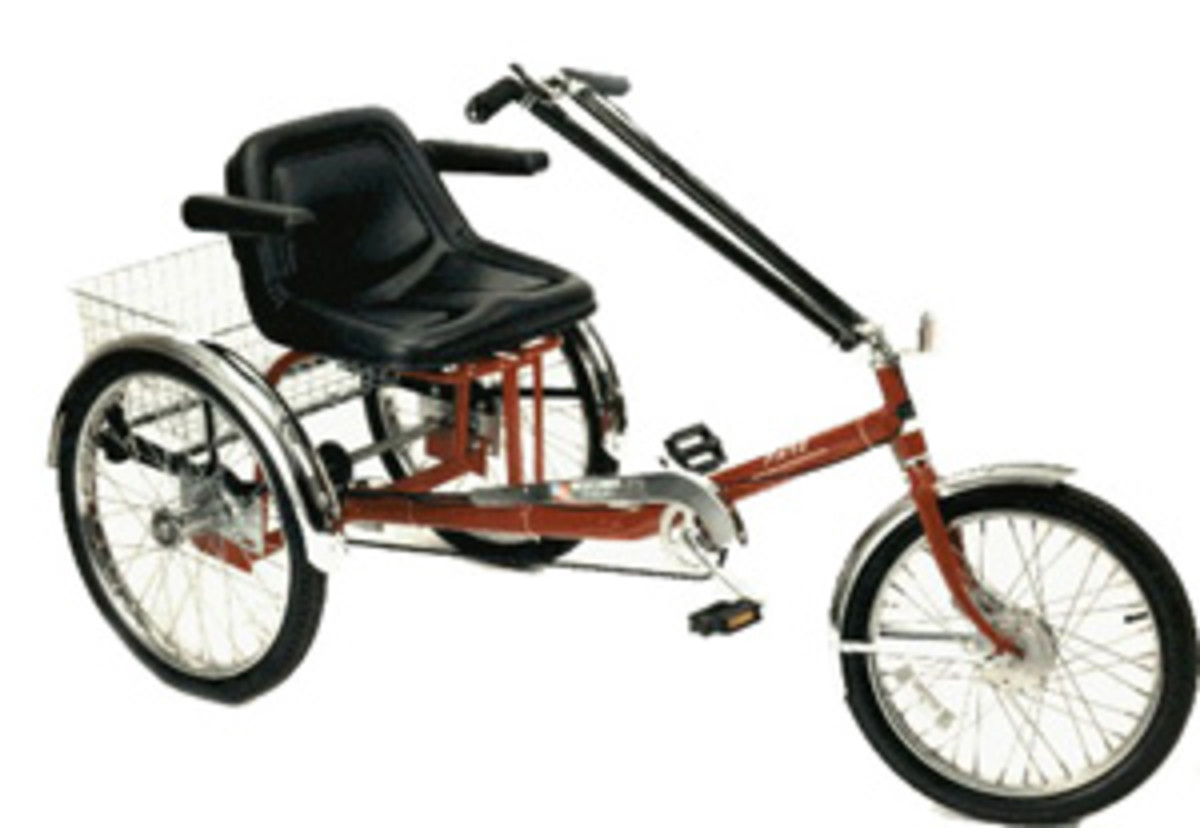 I Want a cute Adult Trike or Tricycle!
