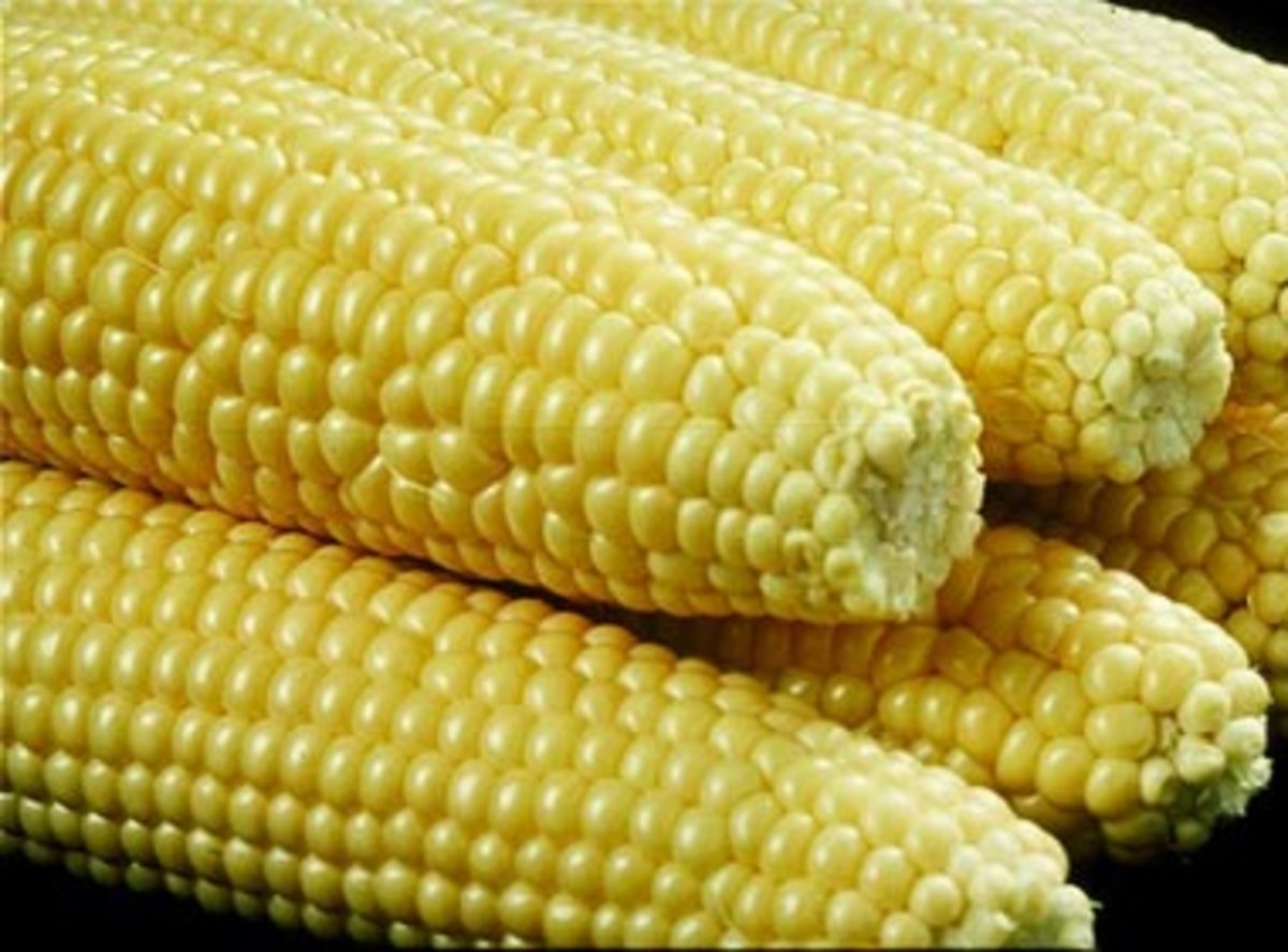 Corn on the cob should be avoided with braces