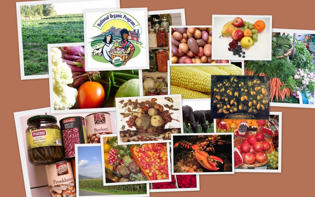 Bend Oregon Natural Food Stores