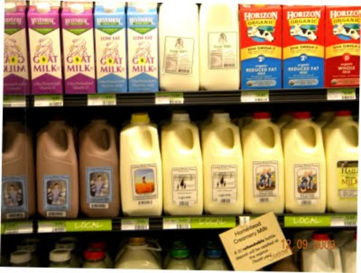 "Assorted Dairy Products from Local ""Cruze"" Farm at Earth Fare Chattanooga Tennessee"