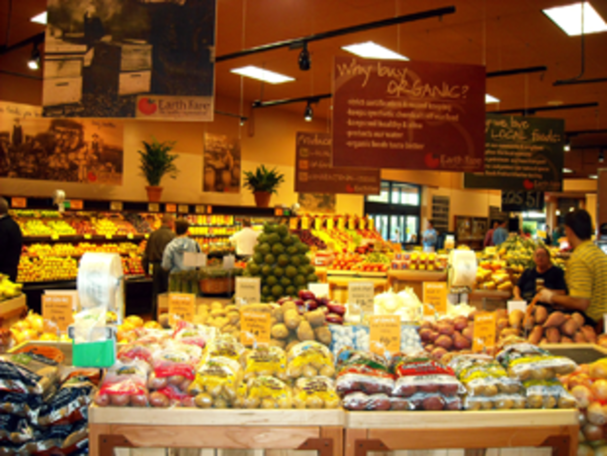 Choice of health food stores which health food stores do you prefer