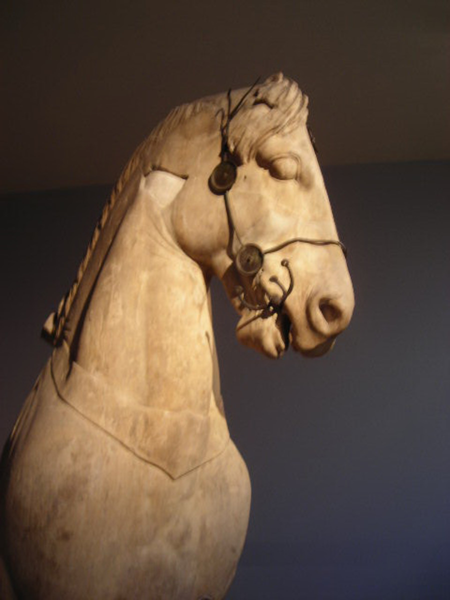 A Horse Statue in the British Museum