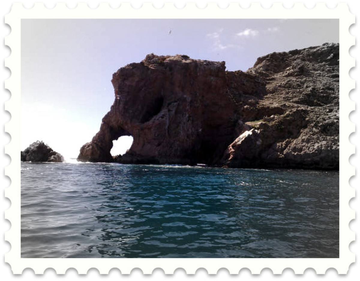 This is the Berlenga elephant - a large sea ravaged granite out-crop that has somehow come to resemble one of life's most majestic creatures. Viewed from the east side.