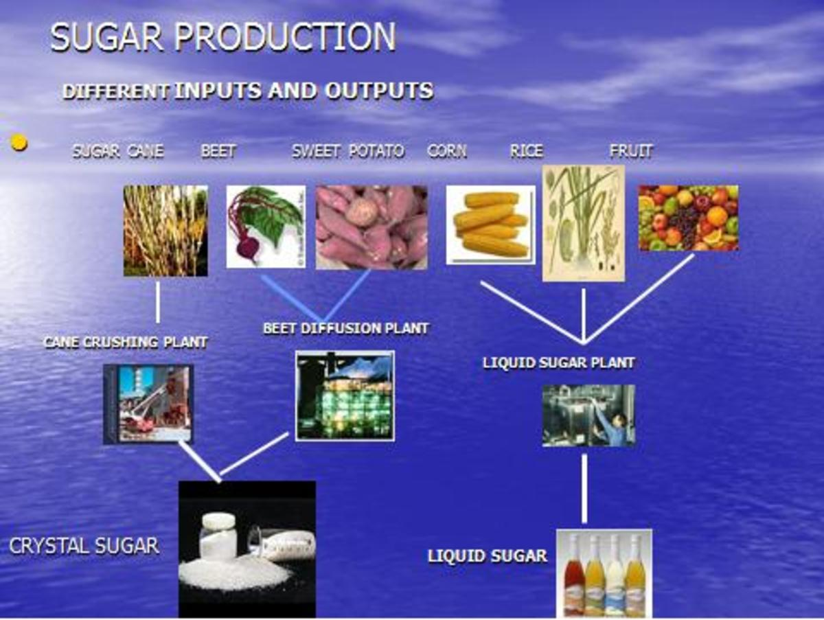Inputs for sugar and its different outputs like crystal sugar, liquid sugar etc.