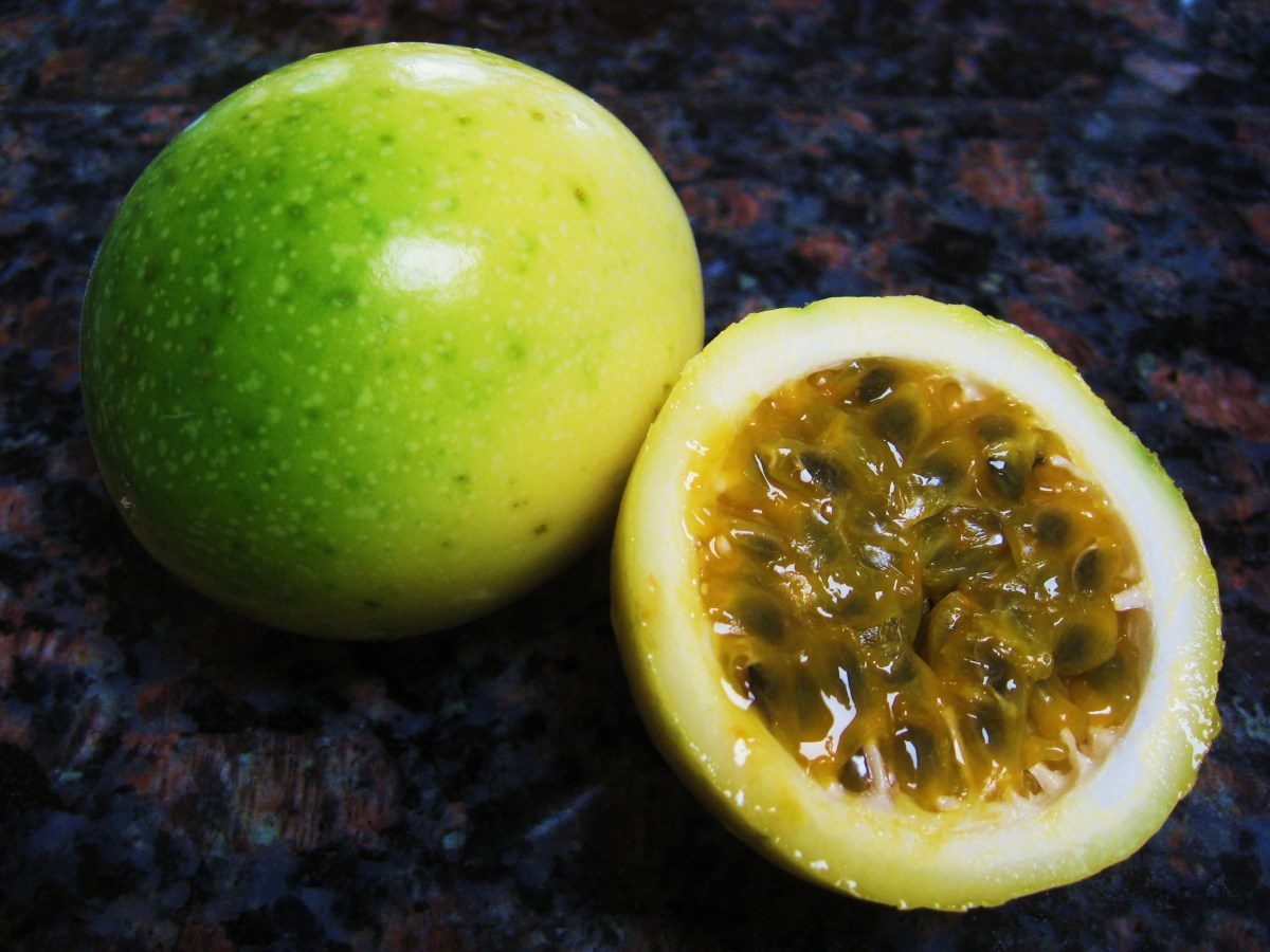 Hawaiian Passion Fruit or Lilikoi