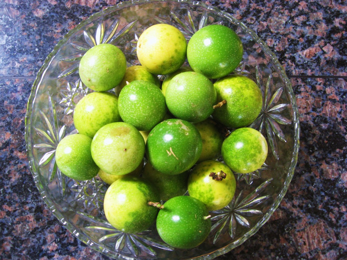 hawaiian-passion-fruit-or-lilikoi