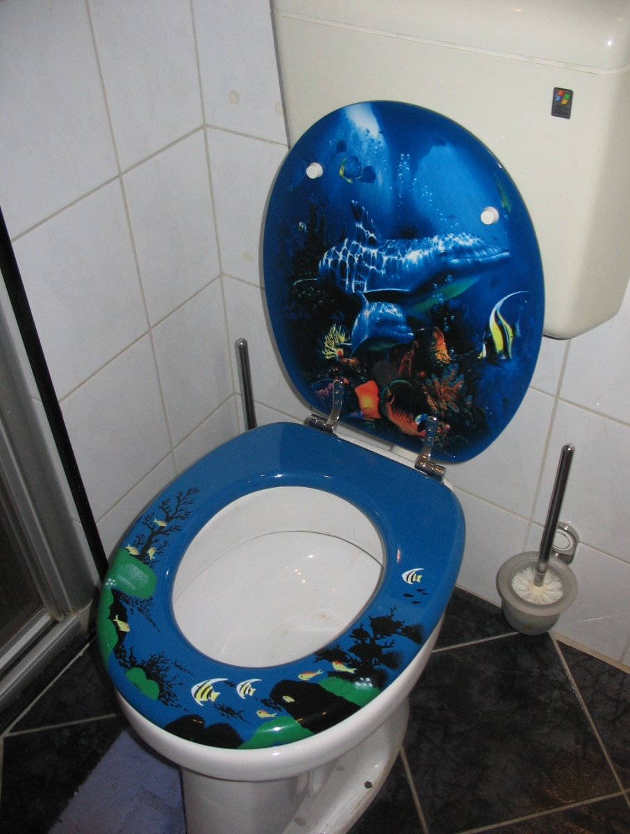 Novelty Toilet Seat